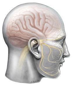 Trigeminalna neuralgija