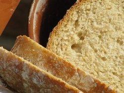 kruh - izvor vlakna