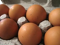 jaje - izvor A vitamina