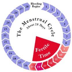 Menstruacija i menopauza